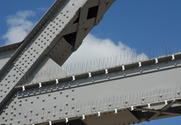 Types of Bird Spikes | Girder Bird Spikes