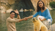 Top Songs from Shahrukh Khan Films | Chalte Chalte