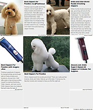 Best Clippers For Poodles | Best Clippers for Poodle Grooming