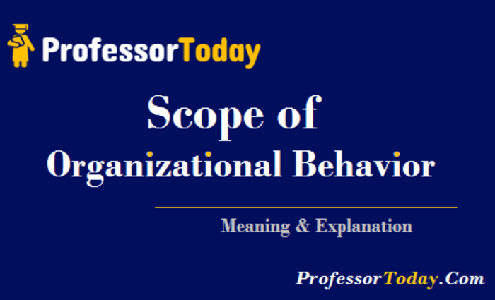 organizational behavior challenges today s managers