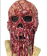 WELLIN Bloody Horror Melted Face Scary Halloween Mask Costume