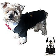 Oscar Formal Tuxedo with Black Tie and Red Bow Tie Dog Halloween Costume