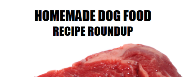 Homemade Dog Food Recipe Roundup