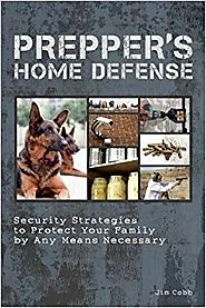Prepper's Home Defense: Security Strategies to Protect Your Family by Any Means Necessary Paperback – December 18, 2012