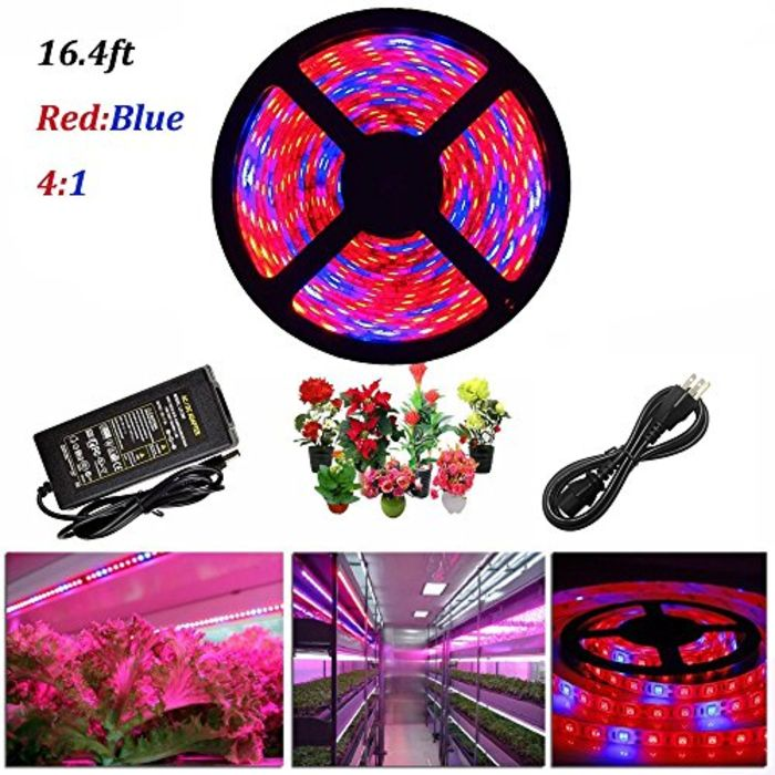 Top 10 Best Led Hydroponic Grow Lights Bulbs Strips A