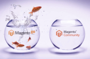 Software that makes Android Rock | Magento Go to Magento Community Edition Migration Services