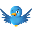 twitter wink 300x300 185px How to Beat Twitter List Rot!