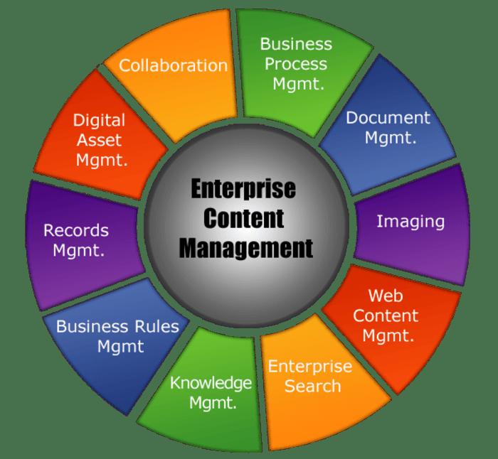 ContCentric provide Enterprise Content Management Services A