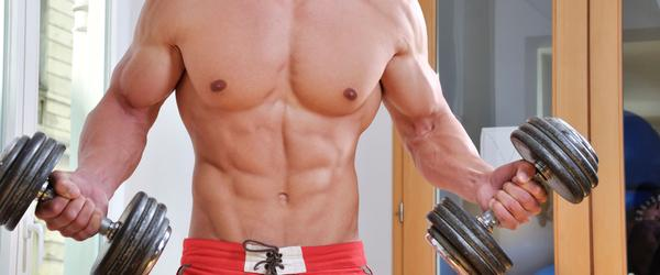 Best Supplements Muscle Gain