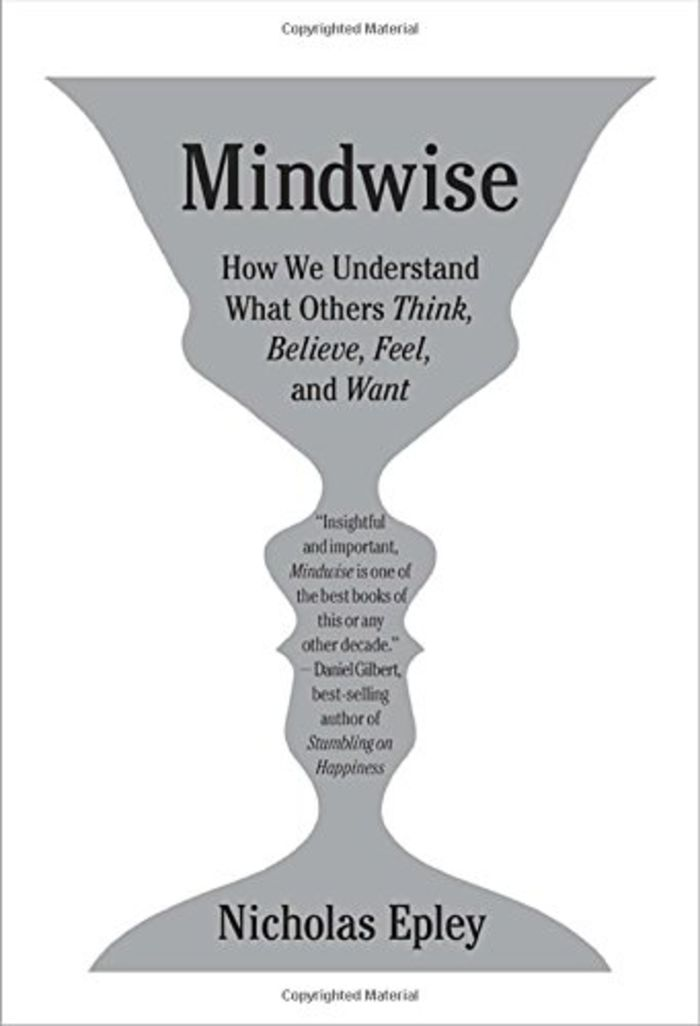 Mindwise: How We Understand What Others Think, Believe, Feel, and Want - Nicholas Epley