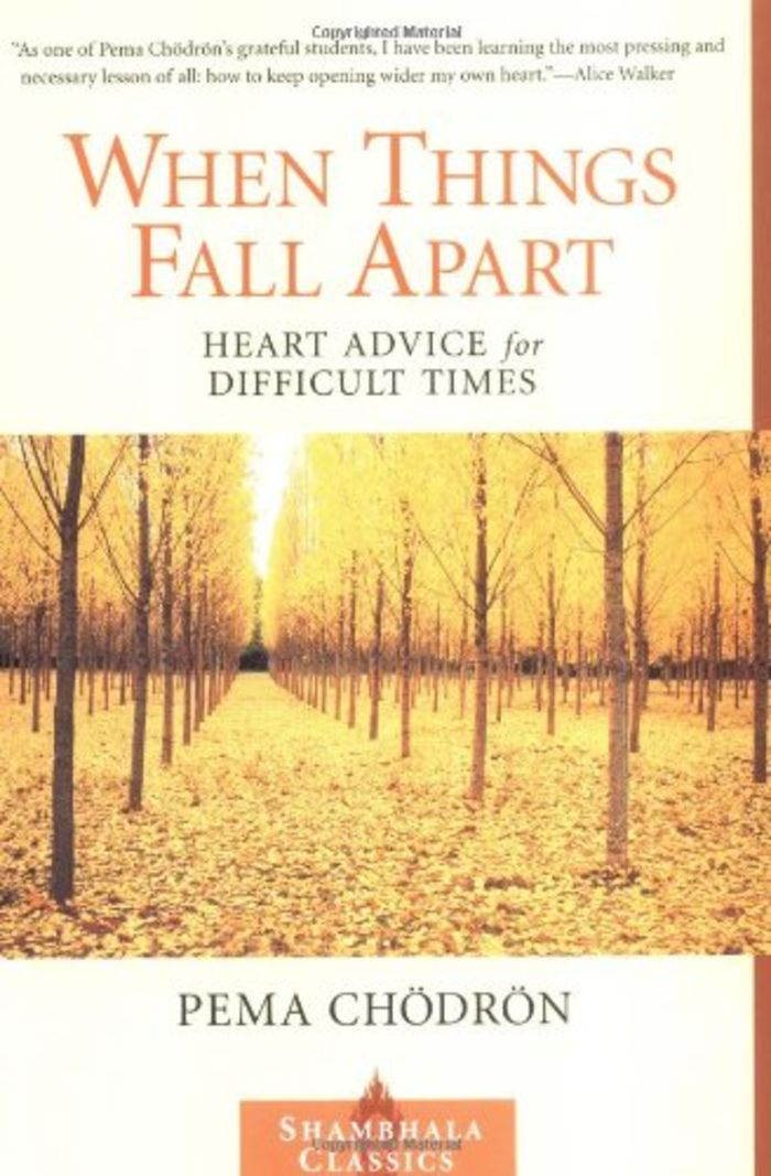 When Things Fall Apart - Pema Chdrn