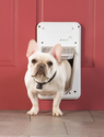 Best Electronic Dog Door Reviews 2015 - 2016 | Best Electronic Dog Door Reviews 2013 - 2014