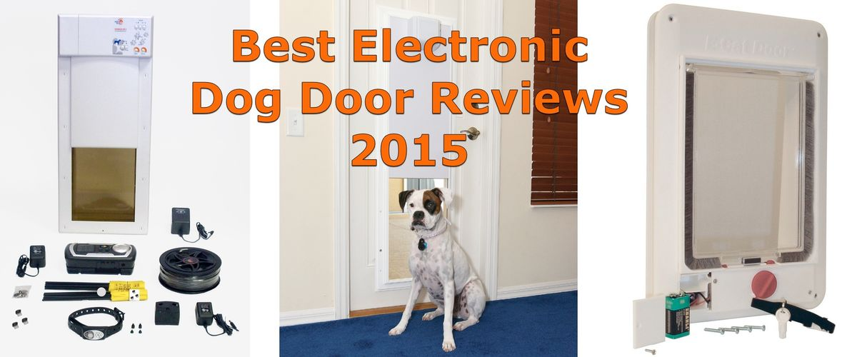 Headline for Best Electronic Dog Door Reviews 2015 - 2016