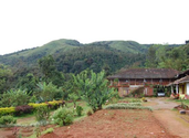 Best Homestays in Coorg with Prices Coorg Homestay | HomeStay in Coorg, Palace Estate