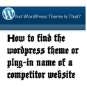 WordPress by Neil Ferree