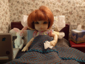 Best Doll Blogs - Fashion, Collecting & Photos | Miranda Wandering