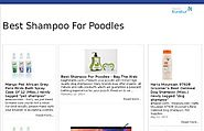 Best Rated Shampoos For Poodles Reviews | Best Poodle Shampoos