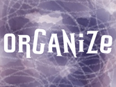 Collect - Organize