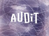 Collect - Audit