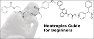 Nootropics Guide for Beginners | Beginners Guide to Nootropics: Everything You Need to Know - storify