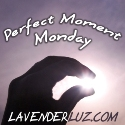 Perfect Moment Monday August, 2012 | A Perfect Start | Dragondreamer's Lair