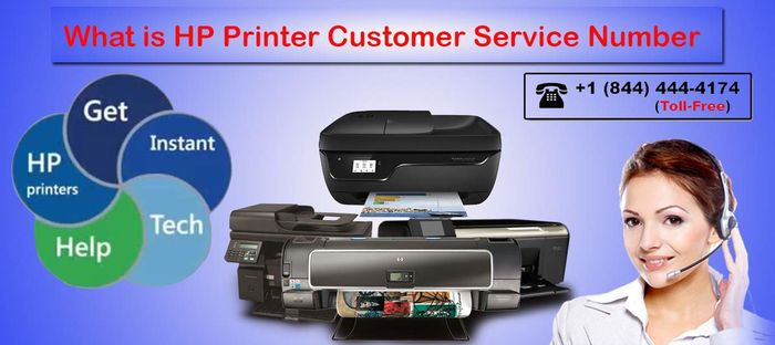 HP Printer Support Number for Instance Assistance on HP