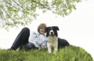 Best Dog Training Websites | Patricia McConnell PH.D. | McConnell Publishing Inc.