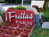 South Boston Farmers Market - Local Food Guide - Metro Boston MA