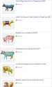 Cow Decor & Cow Collectibles