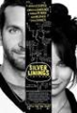 Best Movies of 2012 | Silver Linings Playbook