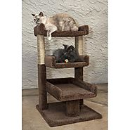 Best Cat Trees for Large Cats | New Cat Condos Triple Cat Perch - Brown