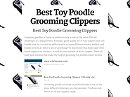 Best Rated Toy Poodle Grooming Clippers Reviews | Best Toy Poodle Grooming Clippers