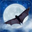 Bats! Furry Fliers of the Night App By Story Worldwide