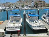 GAVIOTA SPORT FISHING