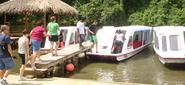 Costa Rica Ecotourism. Experience the real ecotourism with Greenway Nature Tours, a company specialized in Eco Tours ...