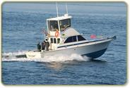 Bob's Trophy Charters | Hailbut Charter Fishing, Salmon Charter Fishing, and Combination Halibut, Lingcod and Rockfis...
