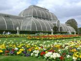 SS Virtual Fieldtrips & Tours | Explore Kew Gardens