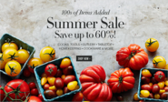 Top 10 Summer Web Designs - Vote Now | Cookware, Cooking Utensils, Kitchen Decor & Gourmet Foods | Williams-Sonoma