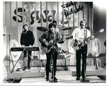 The Standells -Sometimes Good Guys Don't Wear White - RocknRoll Goulash