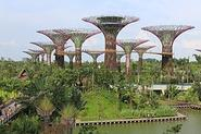 Gardens by the Bay - Wikipedia, the free encyclopedia