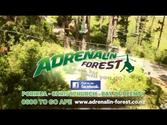 Adrenalin forest - High wire course, adventure park in forest