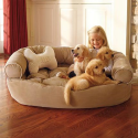 DESIGNING for Pets! | Designer Comfy Pet Couch: