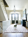 DESIGNING for Pets! | Lifestyle Design for Pets.