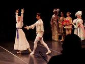 St Petersburg Ballet Theatre - Wikipedia, the free encyclopedia