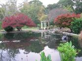 New Hanover County Extension Service Arboretum