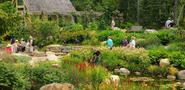 Coastal Maine Botanical Gardens|Botanical Garden in New England