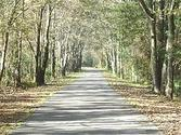 Jacksonville-Baldwin Rail Trail - Wikipedia, the free encyclopedia