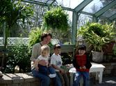 Wings of Mackinac | Welcome to the Wings of Mackinac web site. Our beautiful butterfly conservatory is located on his...