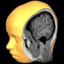 Brain Tutor 3D for iPhone, iPod touch, and iPad on