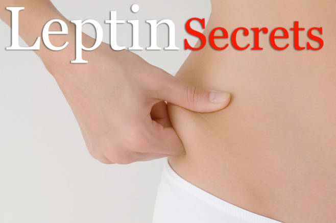 Headline for Leptin Resistant Diet Plan